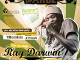raydarwin_flyer_druck_01_medium